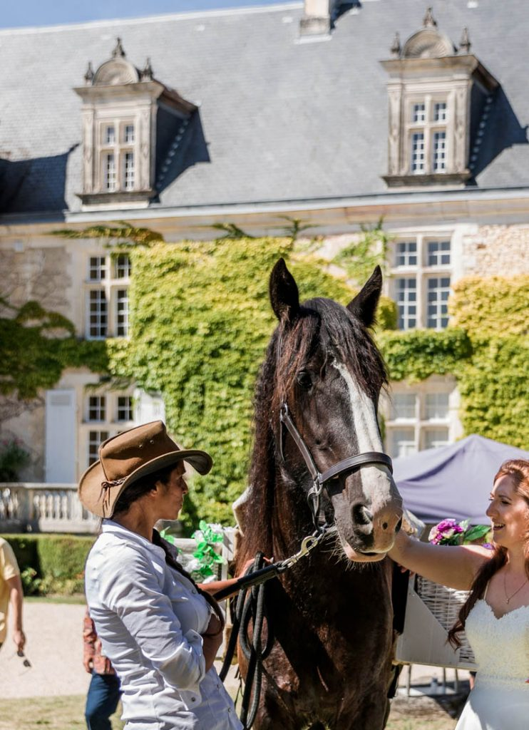 horse hire French events