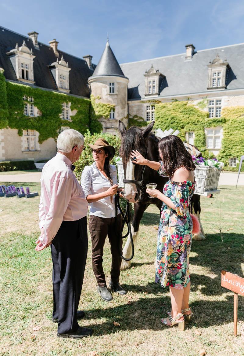 wedding horse hire