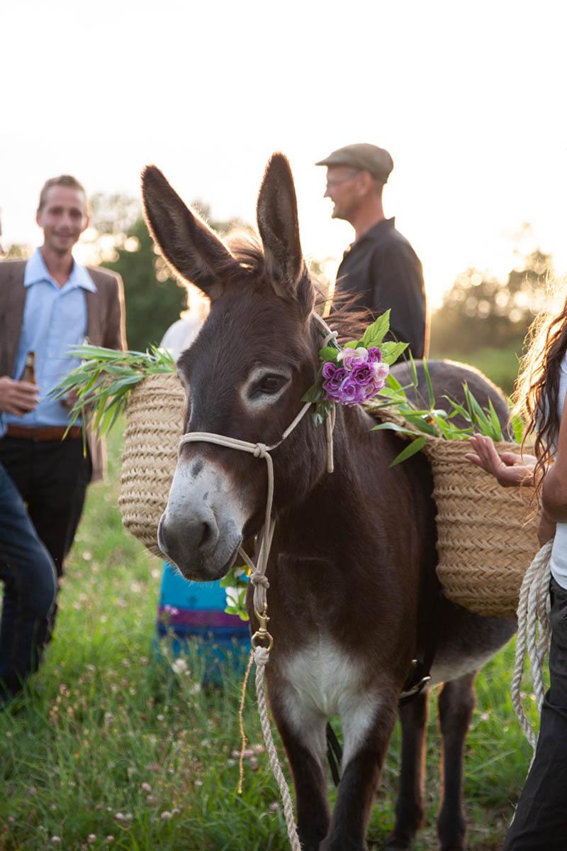 beer donkey